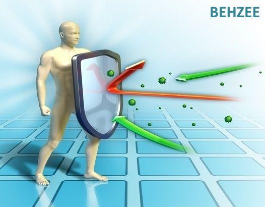 سیستم ایمنی چطور از ما در مقابل ویروس ها محافظت میکند؟