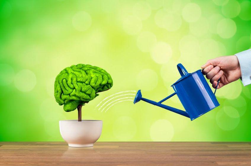 ۶ عادت خوب برای تقویت حافظه